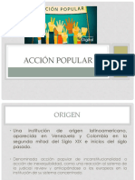 Accion Popular (1)