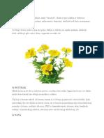 Zdravlje biljaka