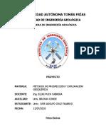 CARATULA DE PROSPECCION.docx
