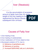 Fatty Liver (Steatosis) (1)