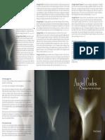 ANGEL CODES.pdf