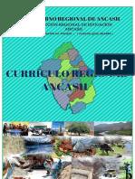 CURRÍCULO_REGIONAL_ANCASH (9.22)Versión_final (1).pdf