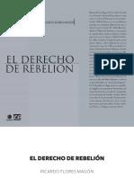 ric_flormag_derreb.pdf