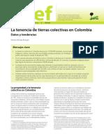 La Tenencia de Tierras Colectivas en Colombia Datos y Tendencias