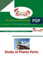 -mnt-target02-343621-541328-www.makemegenius.com-web-content-uploads-education-HawkinsPlantsParts.ppt