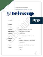 Monografia de Dirección y Control Empresarial