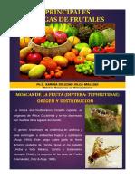 Capitulo IV Plagas de Frutales I Parte