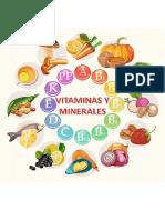 las vitaminas y los minerales