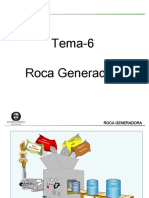 88741684 6 Roca Generadora