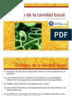 41450522-Nutricion-microbiana