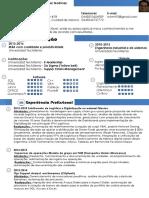 CV Miguel Ramirez Portugues