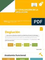 Seminario 1 Fisio y Evaluación Deglución.