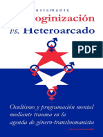 Androginización y Heteorcado - Pedro Bustamante