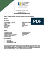 1 Gu+¡a Reconocimiento de Biomol+®culas