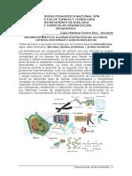 Lab. Determinacion de Biomoleculas (1)