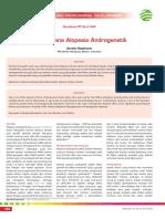 08_267CPD-Tatalaksana Alopesia Androgenetik.pdf