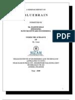 Seminar (Blue Brain)