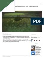 Vivo Mira Peces Nadar Alrededor Gigantesco Centro Datos Submarino Microsoft 864 Servidores