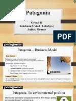 Patagonia Group 11.pptx