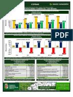 CIFRAS-389-Intercambio-Comercial-Brasil.pdf