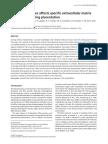 aloxano.pdf
