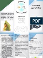 Lyery Brochure