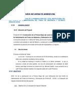 Estudio Imp Ambiental CAFAE ESSALUD