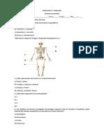 evaluacion ciencias 4.docx
