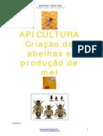 Criação de Abelhas e Produção