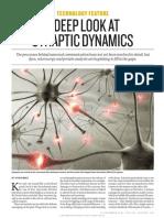 A Deep Look at Synaptic Dynamics
