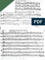 310091357-Variaciones-de-Jota-en-7-Tonos.pdf