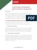 Ponha o Ceu Para Trabalhar.pdf.PDF
