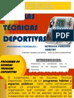 Manual de Educacionfisica Adaptada Al Alumno Con Discapacidad