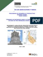 TDR  Jatarana- San Martín. FF.doc