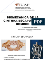 Biomecánica de La Cintura Escapular y Hombro
