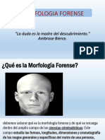 MORFOLOGIA FORENSE