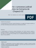 8 E-Judiciário.pdf