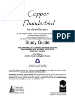Copper Thunderbird Guide