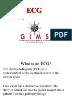 ECG Detailed