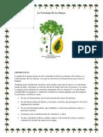 La Papaya Agrometeorologia