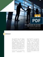 kam-modelo de atendimento de gestao de contas especiais.pdf