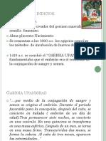 embriología2