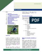 Desarrollo_20sustentable.pdf