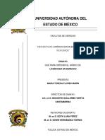 ENSAYO DESVENTAJAS JURIDICO-SOCIALES DEL DIVORCIO INCAUSADO.pdf