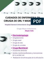 28. Cuiddaos de enfermeria en ORL y Maxiofacial en CMA .pdf