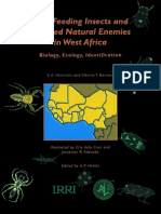 Rice feeding insects and selected natural enemies in West Africa.pdf
