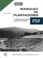 Marco-Plantacion.pdf