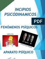 Presentación procesos psicod