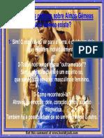 Almas_Gemeas.pdf