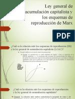 Ley General de Acumulacion Capitalista y Esquemas de Reproduccion